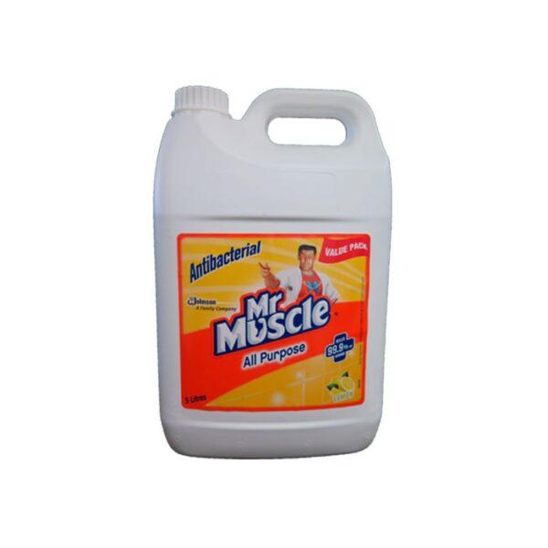 Mr Muscle Antibacterial Disingfectant L