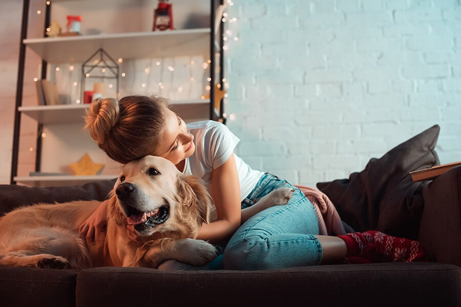 Seven pet-friendly cleaning tools